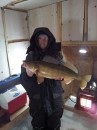 28 inch  9 pounds